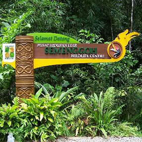 Semenggoh Wildlife Rehabilitation Centre